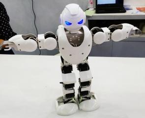 多功能仿真机器人